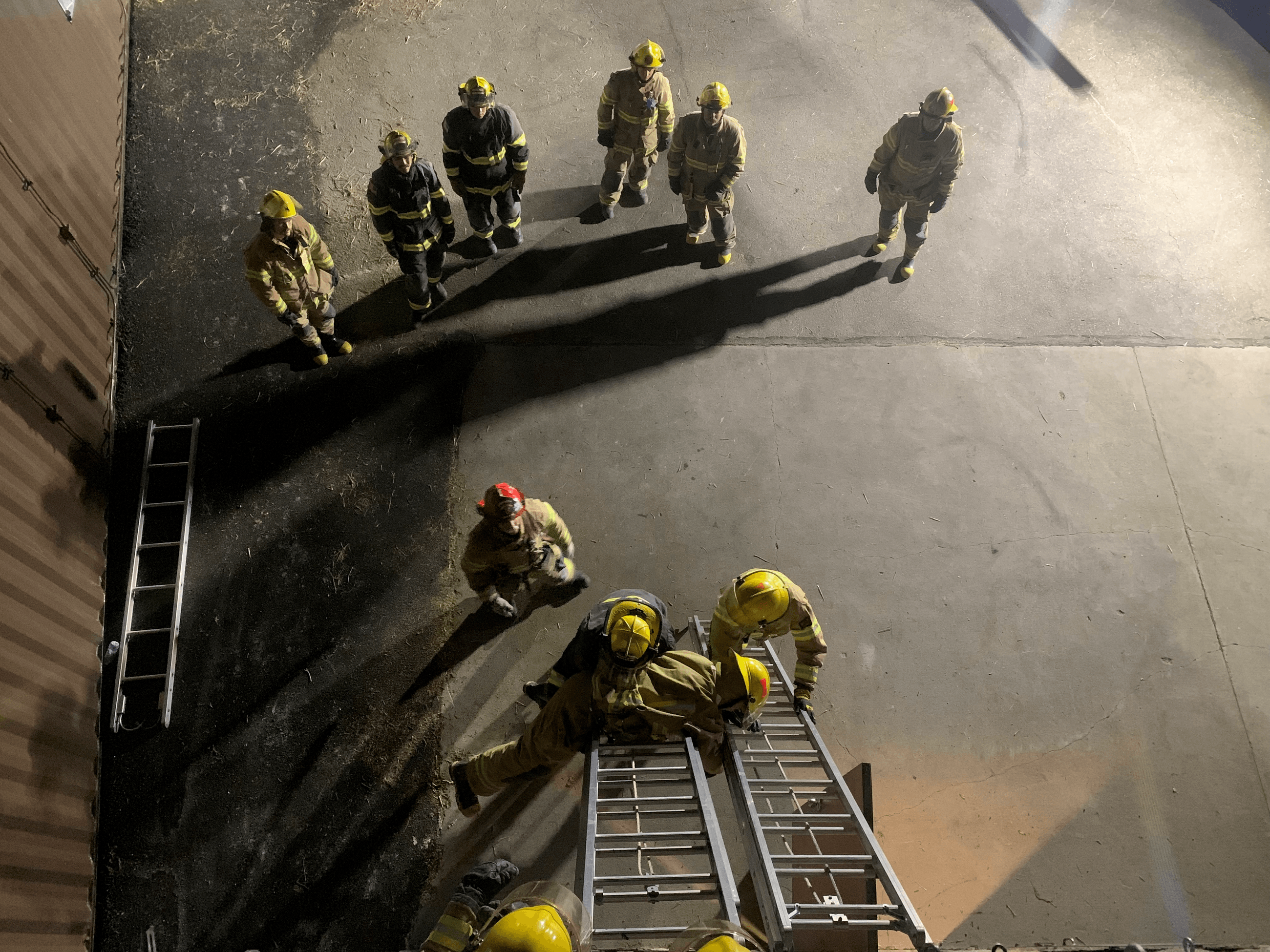ladder training web