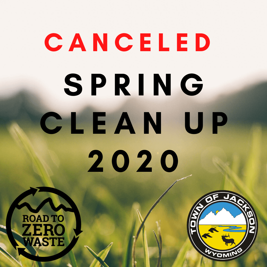Spring Clean Up 2020 (1)