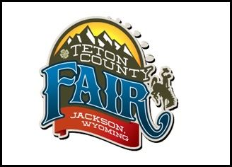 TCo Fair web news flash